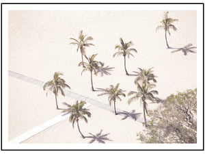 Sunbaking Palms (CHOOSE FRAME COLOUR) 75x100cm CLEARANCE