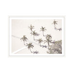 Load image into Gallery viewer, Sunbaking Palms (CHOOSE FRAME COLOUR) 75x100cm CLEARANCE