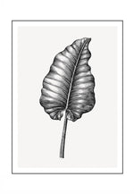 Load image into Gallery viewer, Vintage Leaf 1