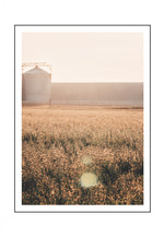 Load image into Gallery viewer, Wheat Meadow