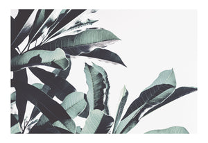 Foliage Envy 1 Portrait (PRINT ONLY with border) 50x70cm Clearance