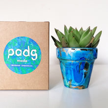 Load image into Gallery viewer, Succulent and padg pot - padgmade