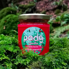 Load image into Gallery viewer, Winter Berries - padg candle - padgmade