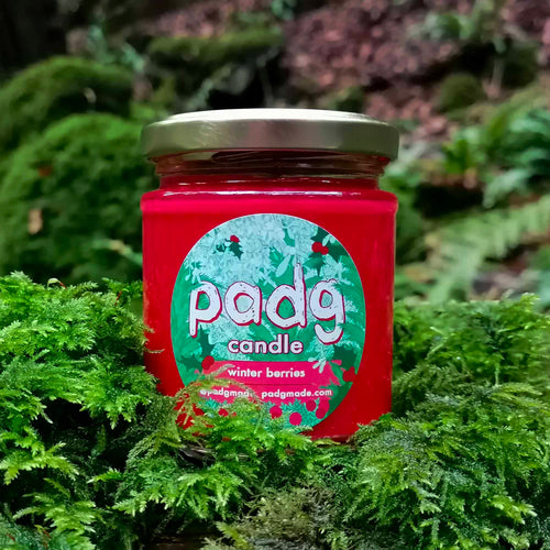 Winter Berries - padg candle - padgmade