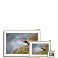 Load image into Gallery viewer, Puffin Framed & Mounted Print