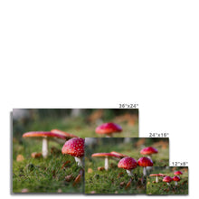 Load image into Gallery viewer, Fly Agaric Canvas