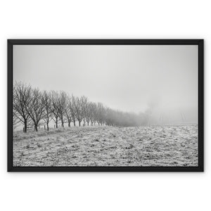 Frosty Morning Framed Canvas