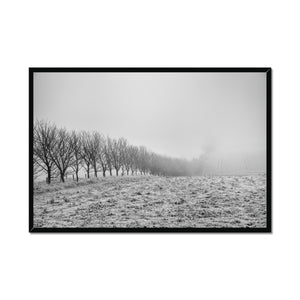 Frosty Morning Framed Print