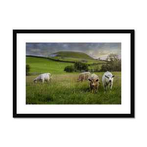 Newgrange Framed & Mounted Print