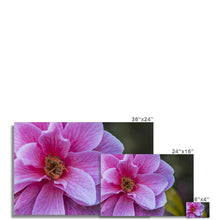 Load image into Gallery viewer, Flower Fine Art Print