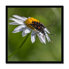 Load image into Gallery viewer, Love is... Framed Print
