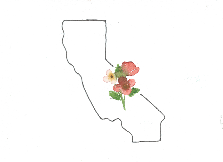 Watercolor print: California state flower