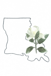 Watercolor print: Louisiana state flower