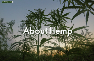 Hemp history in New Zealand