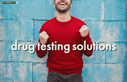 Guide to detox and drug testing solutions