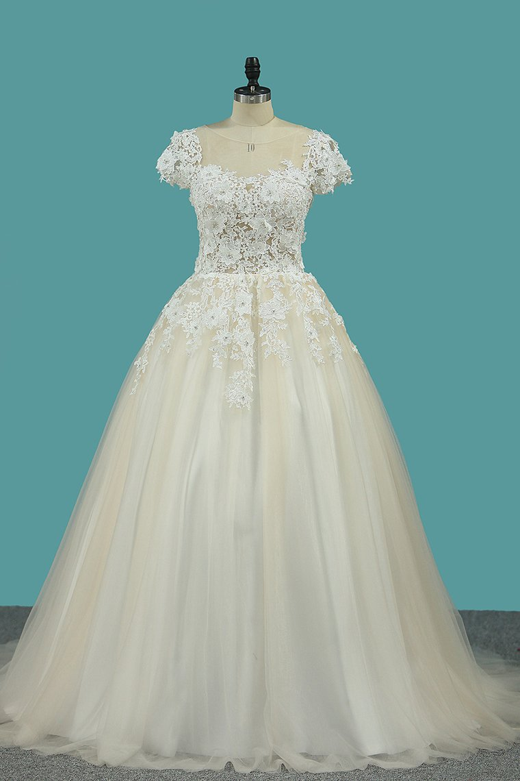 2019 Scoop Short Sleeve With Applique Tulle Court Train Wedding Dresses
