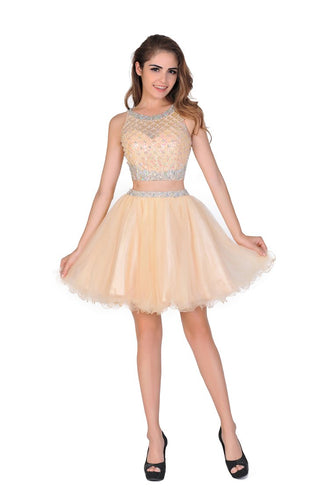 2019  A-Line Homecoming Dresses Short/Mini Scoop Beaded Bodice Tulle