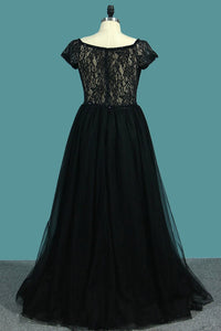 2019 V Neck Short Sleeves A Line Evening Dresses Tulle & Lace Sweep Train