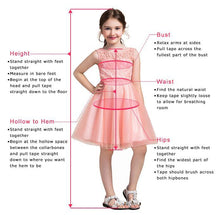 Load image into Gallery viewer, A-Line Tulle Beads Appliques Scoop Blush Pink Button Cap Sleeve Flower Girl Dresses RS888