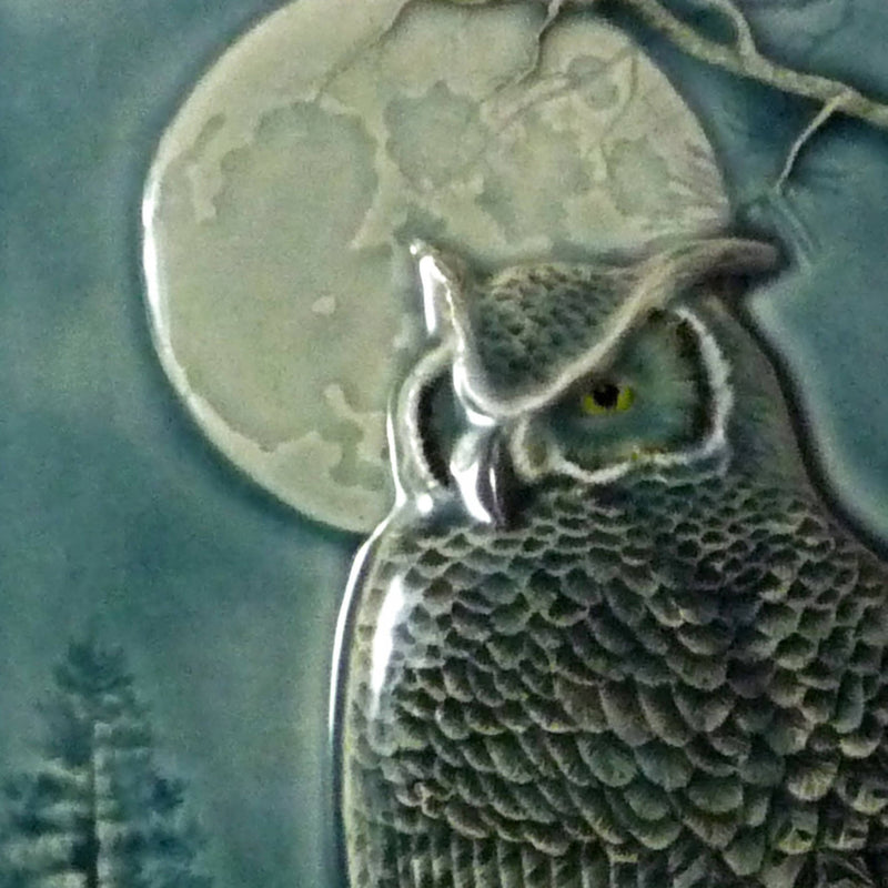 Night Owl, Great Horned Owl
