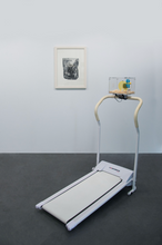 "Load image into Gallery viewer, ""Hamster Treadmill"""