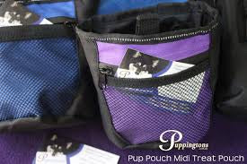 Pup Pouch Midi Magnetic Treat Pouch
