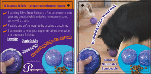 Puppingtons Bouncing Billy's Treat Ball