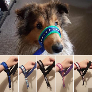 Head Halters (fleece lined) - clip under chin
