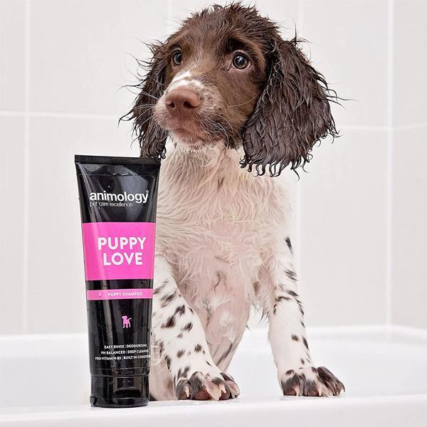 Animology Puppy Love Shampoo - Underdog Pets