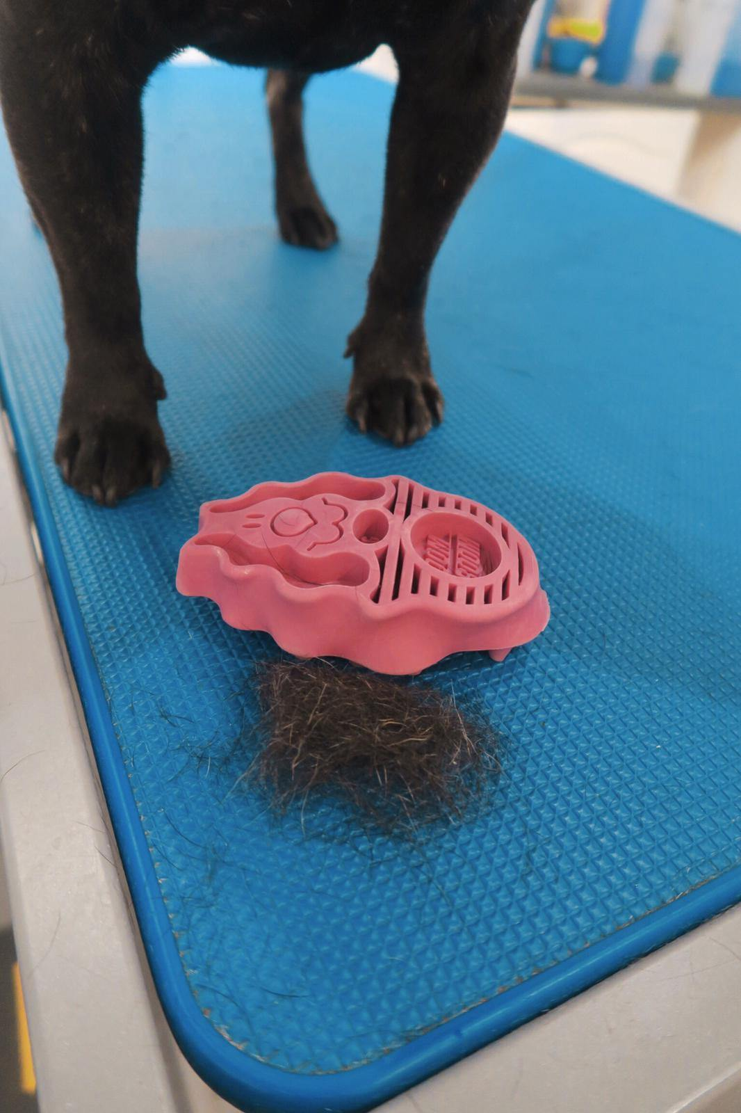 Kong Zoom Groom Dog Brush - Underdog Pets