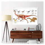 Poster Dinosaure Theropoda - Squelette Fossile Shop