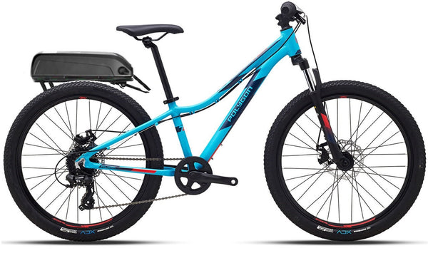 "Relic 24"" 36V Electric Bike"
