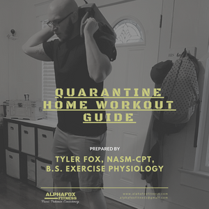 Free Home Workout Program