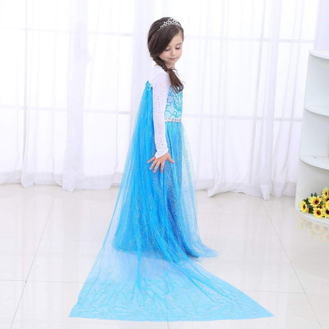 Disney Frozen Elsa Isnpired Girls Ice Queen Costume Dress