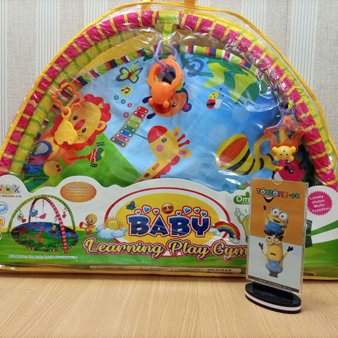 Baby Learning Play Gym