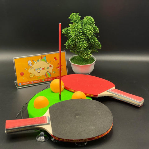 Portable Table Tennis Set with 2 Racket - TZP1