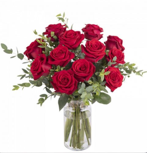 Rose Rosse H24 - FOR ME H24
