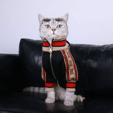 Load image into Gallery viewer, GC EP 2 ™ Pet Jacket