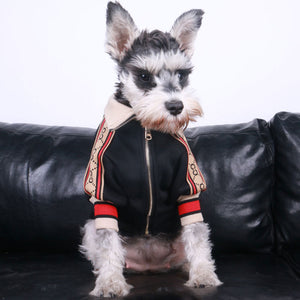 GC EP 2 ™ Pet Jacket