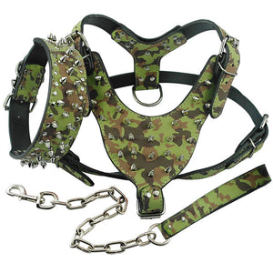 Cerberus™ Pet Walk Set
