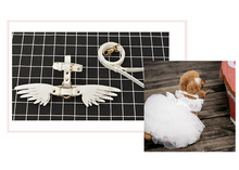 Load image into Gallery viewer, Angel-Wings™ Pet Walk Set