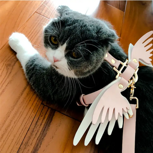 Angel-Wings™ Pet Walk Set