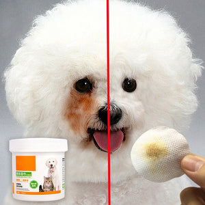 120 Pcs/bottle Pet Round White Wipes