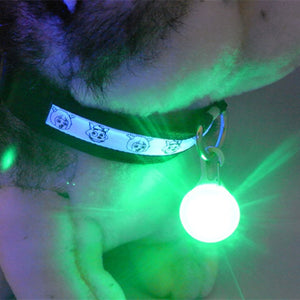 1 PCS LED Flashlight Dog Cat Collar Glowing