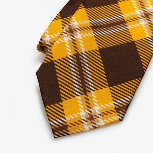 Western Michigan Tie