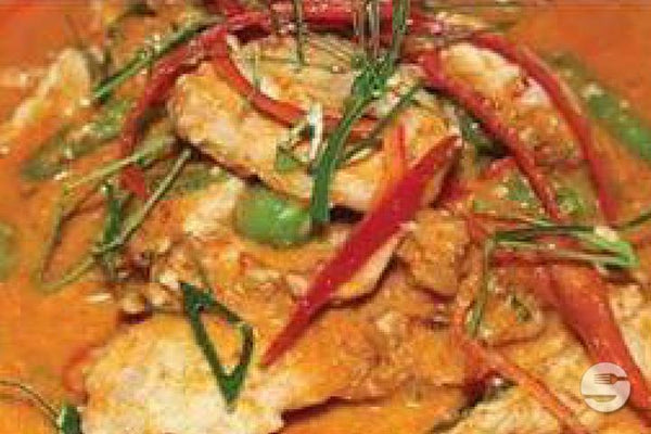 Panaeng Curry mit Tofu
