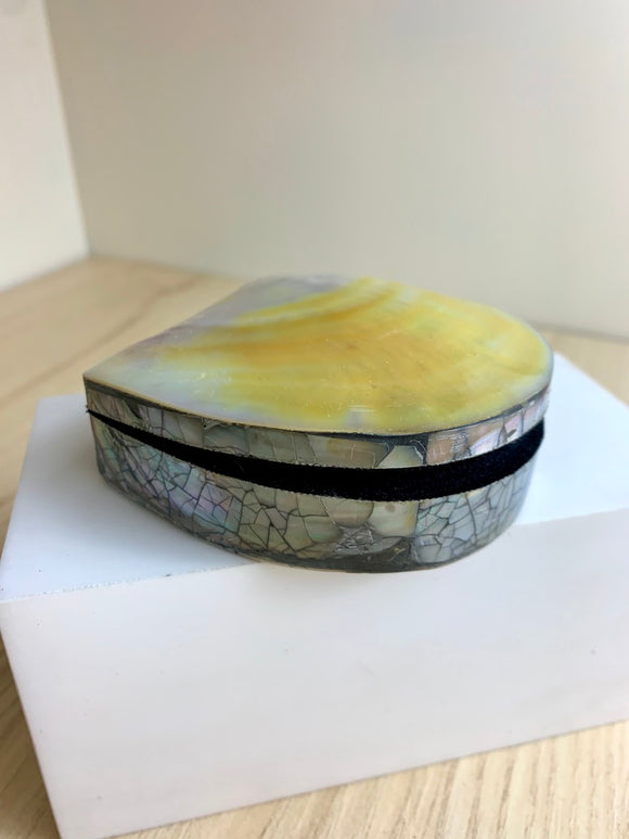 Shell Trinket Box Large