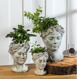 Goddess Planter Medium