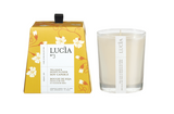 Tea Leaf & Honey Flower Soy Candle