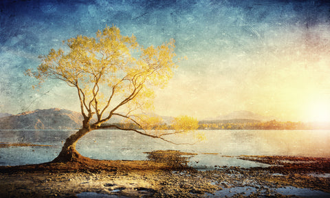 Golden lake by Sergey Nivens, digital canvas print, various sizes
